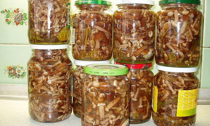 блюда из баклажанов и кабачков рецепты быстро и вкусно с фото в духовке с мясом